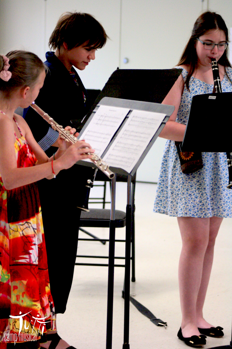 Woodwind trio at work